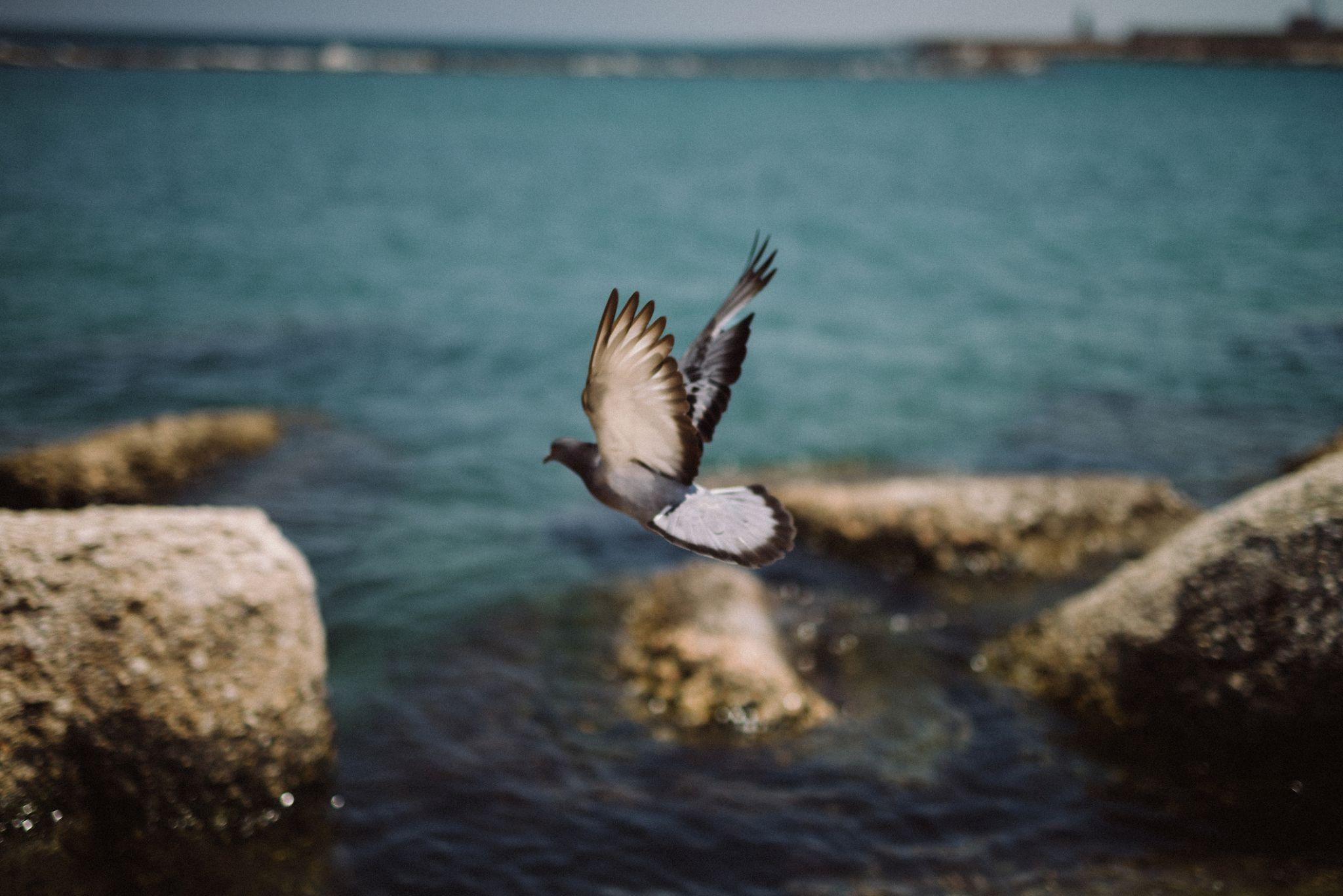 Bari-Italy-Wedding-Photographer-Rokolya-Photography-001