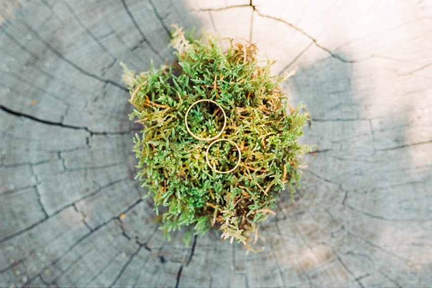 01-wedding-rings-on-moss-natural