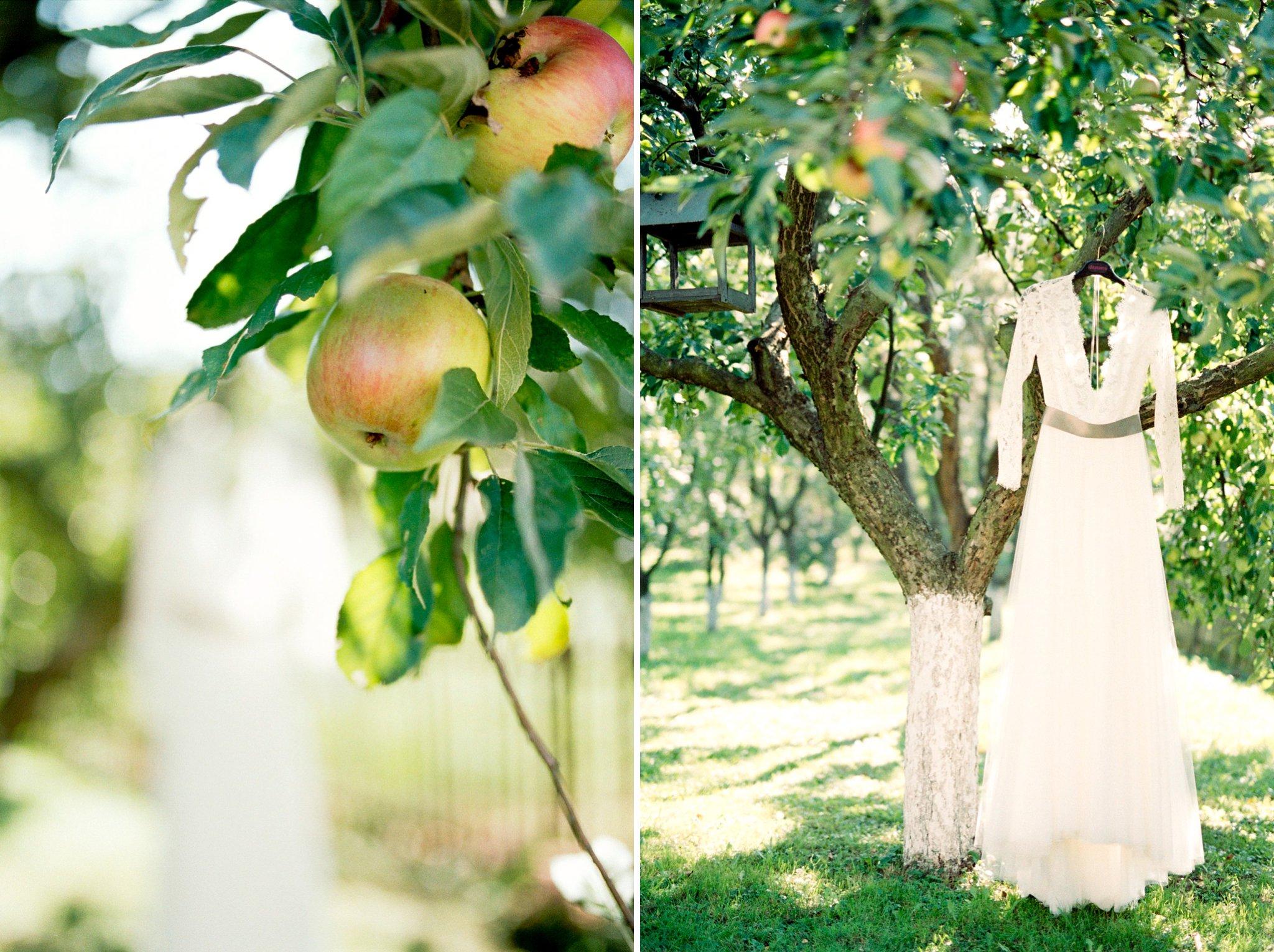 06-daalarna-benes-anita-wedding-gown